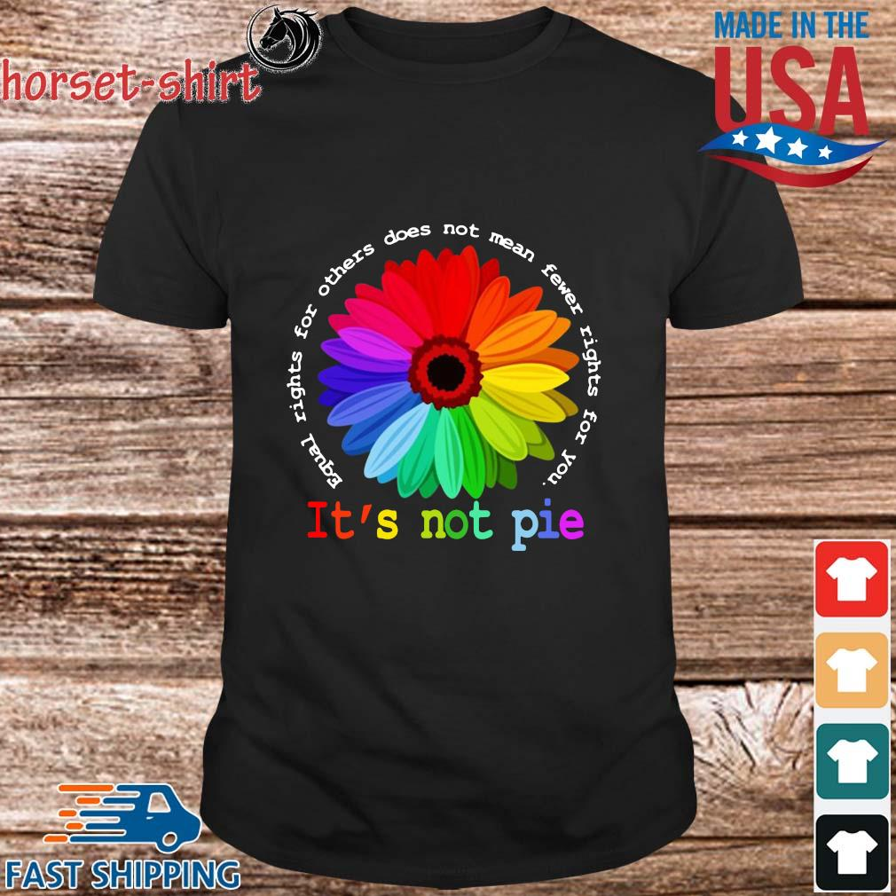 Equal rights for others does not mean fewer rights for you it's not pie shirt
